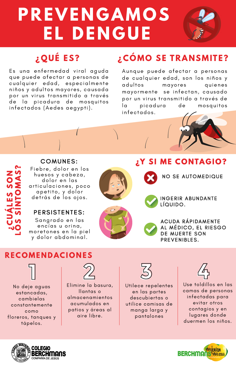 DENGUE PREVENCION